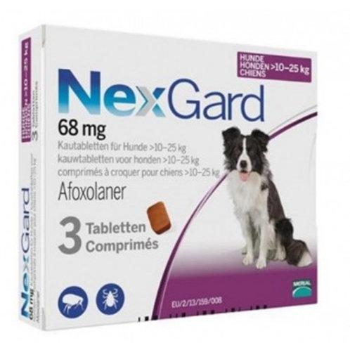 NexGard Large Breed (10-25KG)