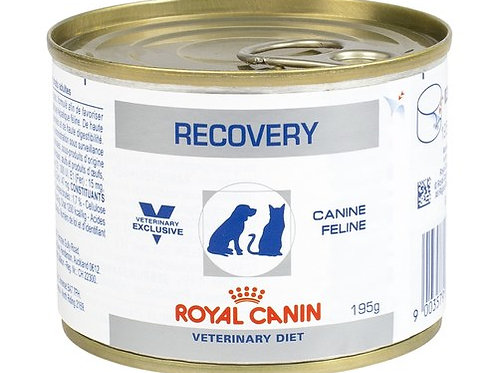 Royal Canin Recovery Food 195G