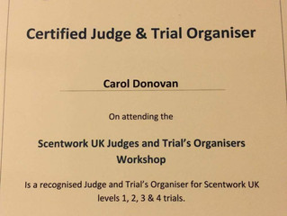 Scentwork UK certified Judge and Trial organisers