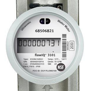 flowIQ 3101 Industrial water meter.jpg