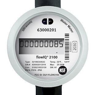 flowIQ 2100 Residential water meter.jpg
