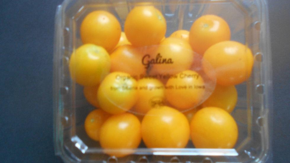 Galina Yellow Cherry  Tomato