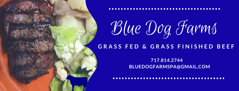 Welcome to the Blue Dog Farms BLOG!