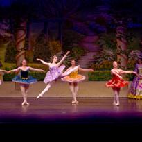 Act 1 Lilac Fairy 2.jpg
