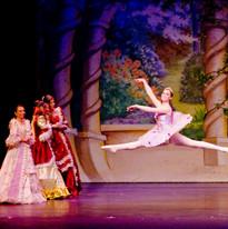 Act 1 Lilac Fairy 1.jpg