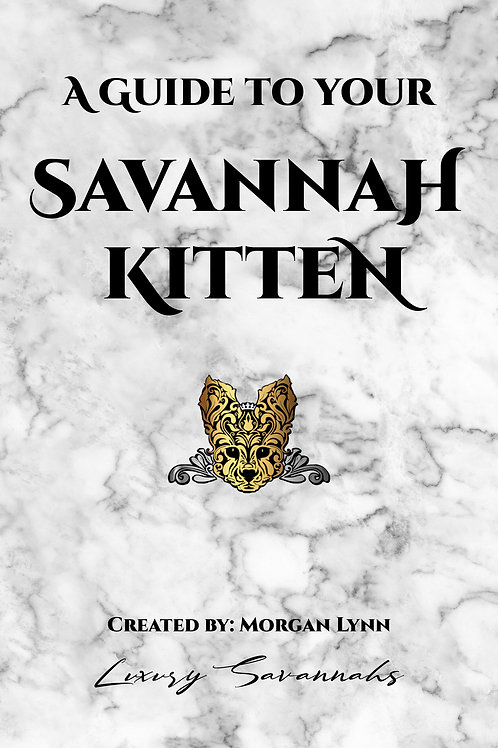 A GUIDE TO YOUR SAVANNAH KITTEN