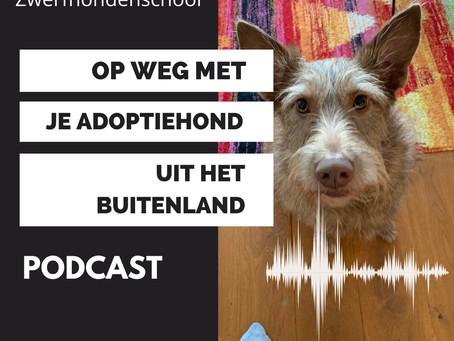 Podcast: Op weg met je adoptiehond uit het buitenland