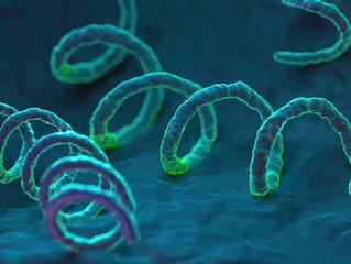 Infectologia | Casos de sífilis no Brasil aumentam mais de 30% e doença já é considerada uma epidemi