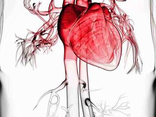 Saiba como cuidar da saúde do coração durante a quimioterapia