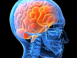 Casos de meningite aumentam durante o outono e inverno