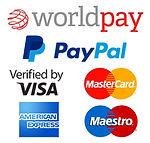 world pay and pay pal logo