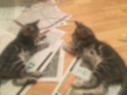 Alvin and Theodore 2.jpg