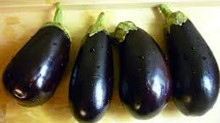 Let's Talk About Eggplants