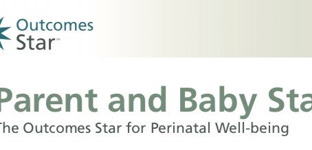 For Baby's Sake helps to shape new Parent and Baby Star tool
