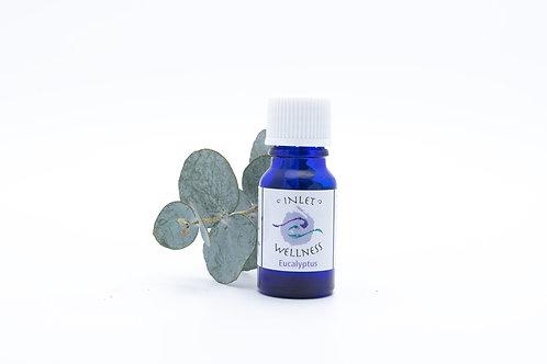 Eucalyptus - 10ml