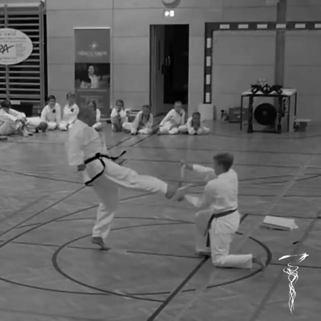 Kampfkunstfestival 2019