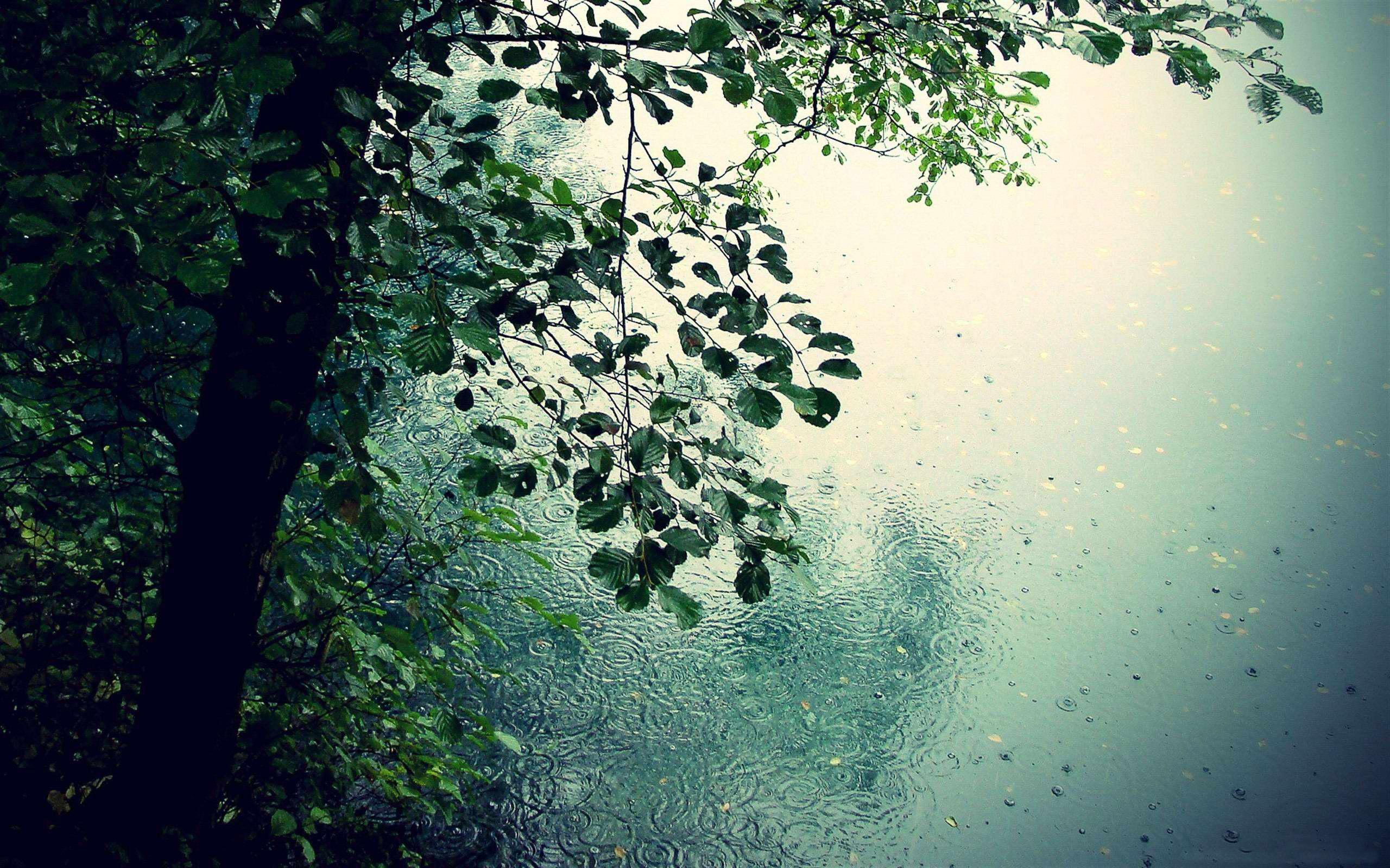 66795783-raindrops-wallpapers