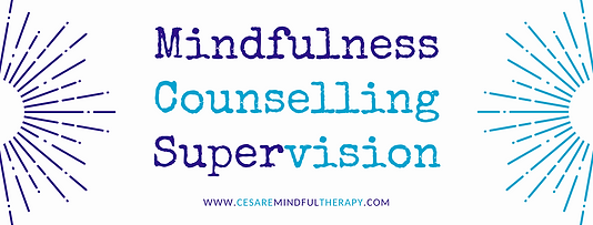 Mindfulness Psychotherapy Supervision (5