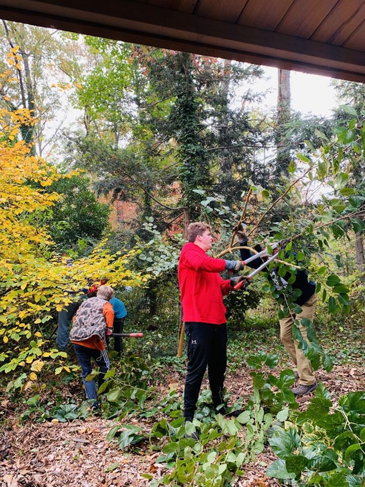 Eagle Scout helping with invasive removal by the Davidsonville Ruritan Garden Pavilion