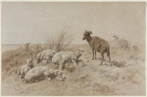 Sheep, Rose Bonheur, 1861, Cleveland Museum of Arty