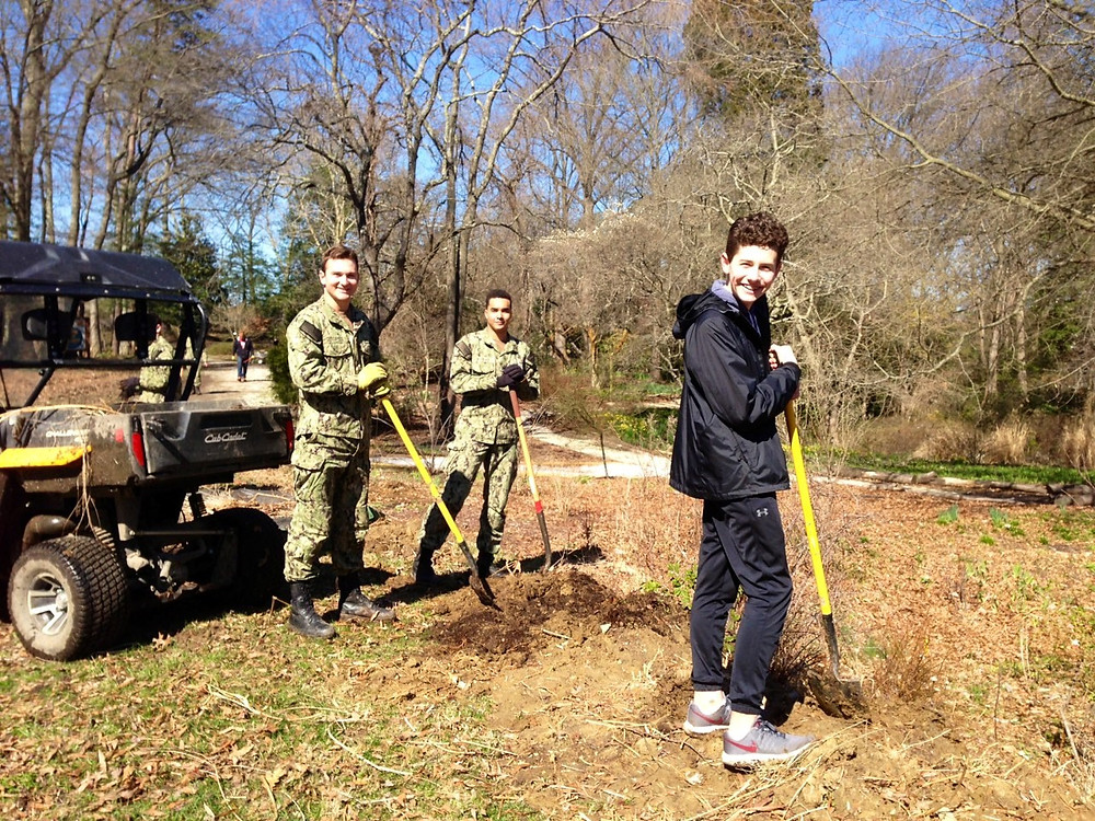 Eagle Scout and Midshipmen group helping in restoring Spring Walk