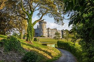 Castles of Ireland.jpg