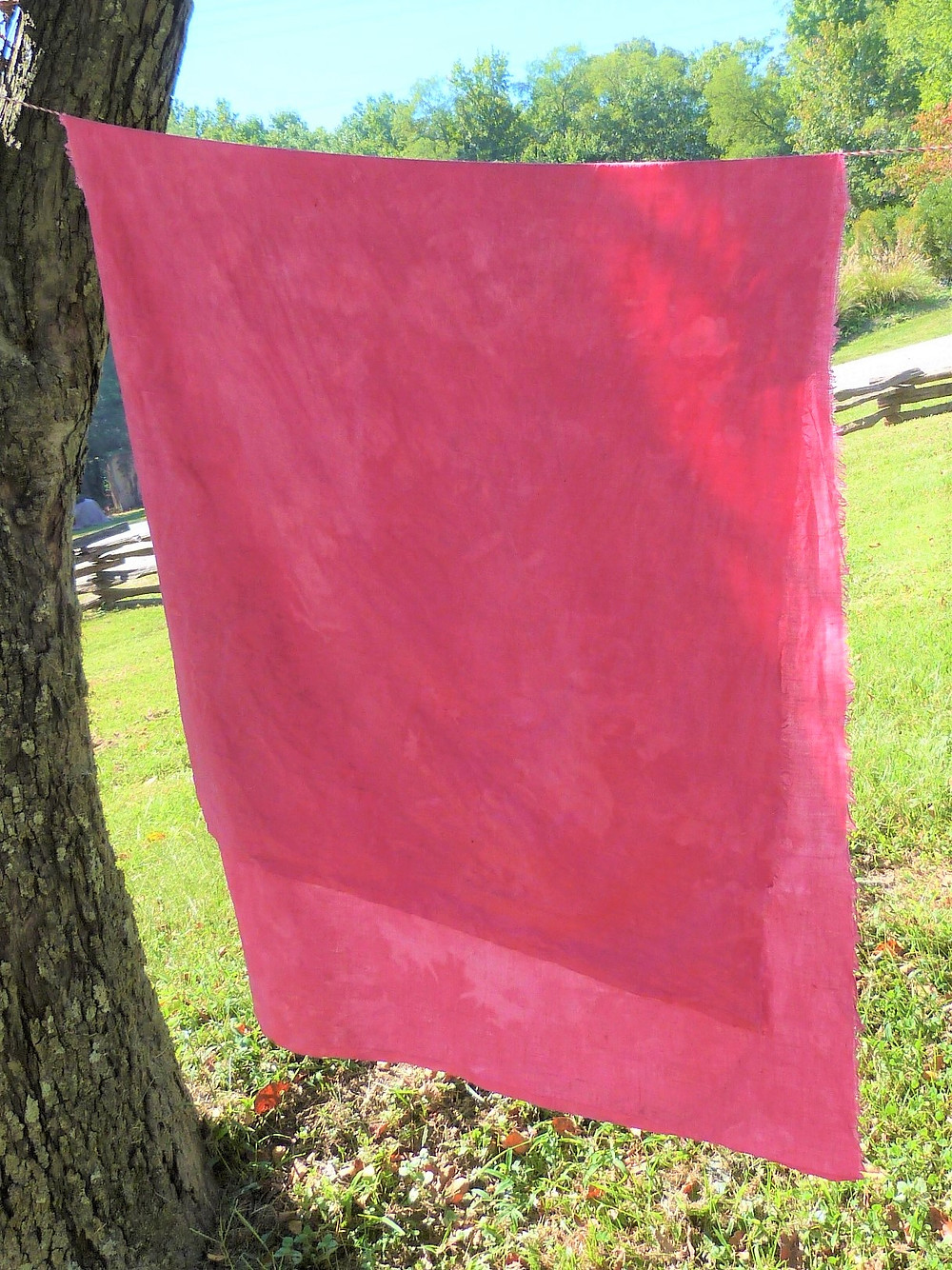 Cochineal dye on linen