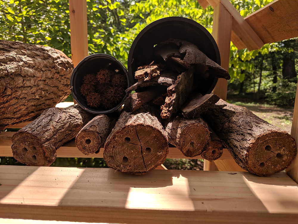 Wood with holes for bees in London Town's pollinator hotel