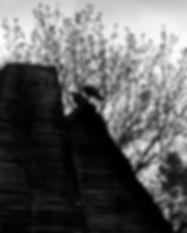 LMT with scary birds.jpg