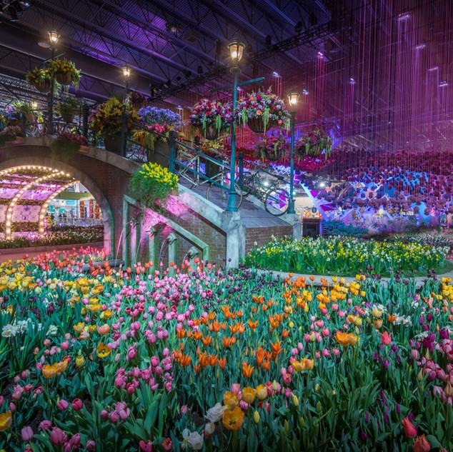 2017 Flower Show (3).jpg