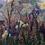 Thumbnail: White Flowers (Unframed)
