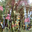 Thumbnail: Pink Flower Meadow (Unframed)