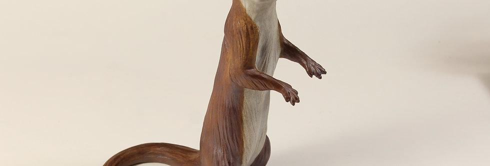 Standing Otter