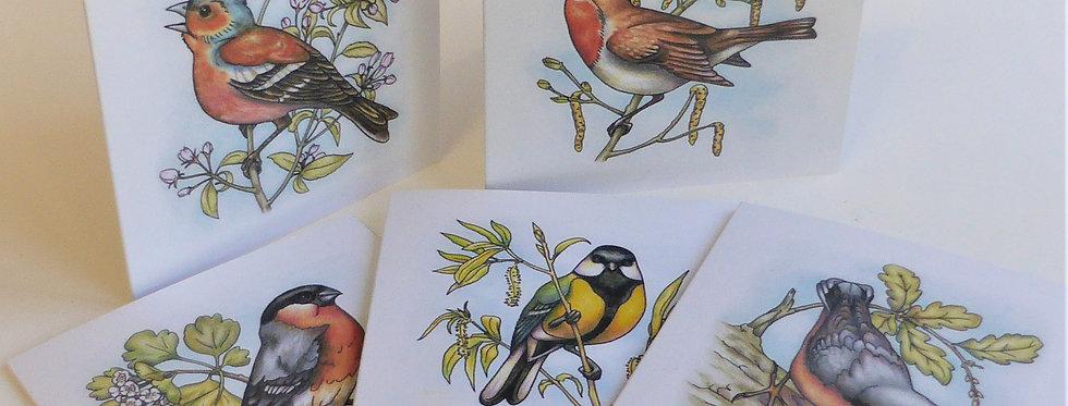Garden Birds Cards