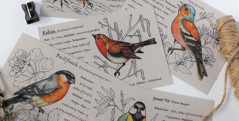Garden Birds Postcards