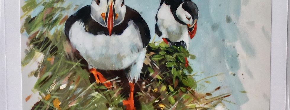 More Bird Cards
