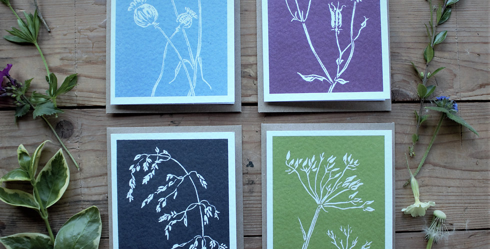 Seedheads Cards