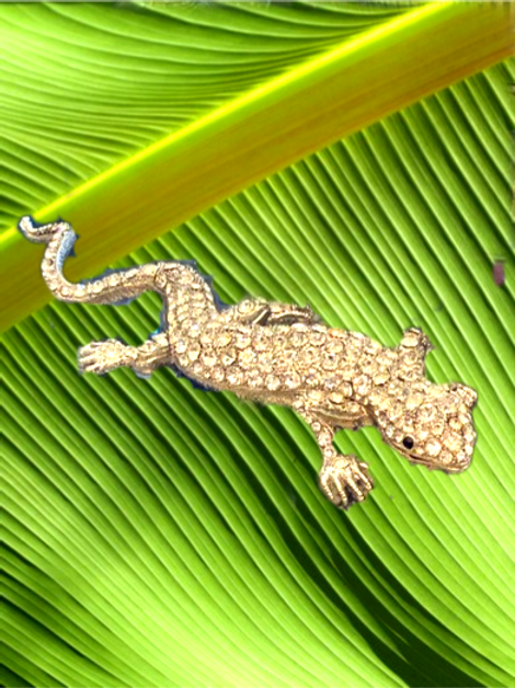 Crystal Gecko Box