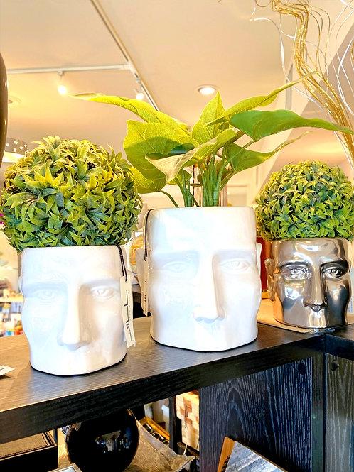 Face Vases