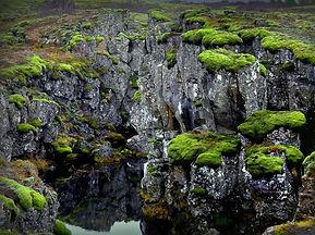 þingv (Large).jpg