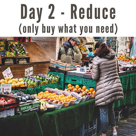 Day 2   41 Days of Eco-Conscious Living