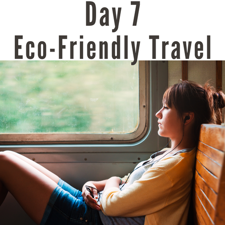 Day 7 | 41 Days of Eco-Conscious Living