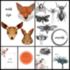 Wander Seek Explore | Free Printable | Nature Studies | DIY Nature Jornal | Homeschool Resources
