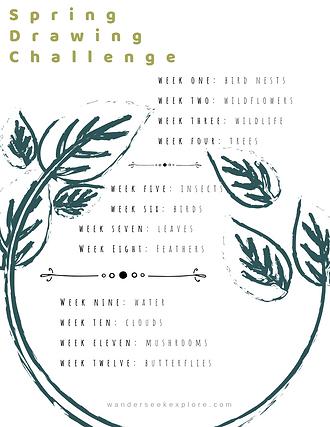 Spring Art Challenge-2.png
