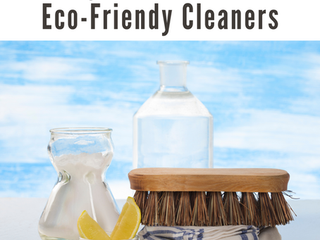 Day 11 | 41 Days of Eco-Conscious Living