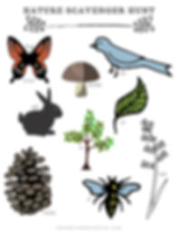 Wander Seek Explore | Free Printable | Nature Scavenger Hunt | Nature Studies
