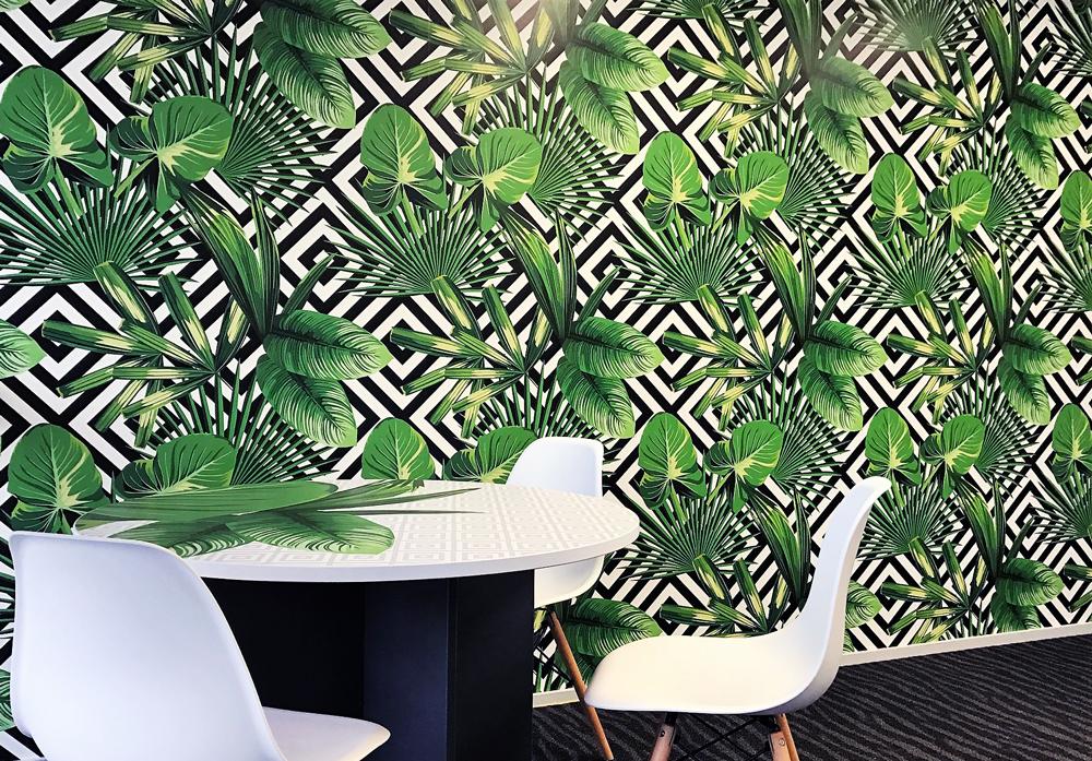 Office-East-Brisbane-Palm