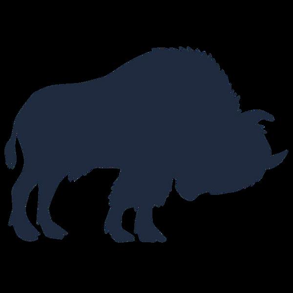 buffalo_edited_edited.png