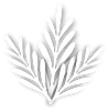 kisspng-leaf-white-tree-clender-5b0fedb0