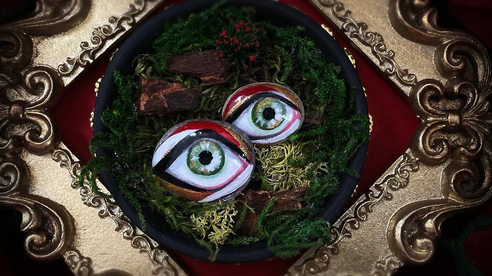 Duo Green Eyes Rock Garden
